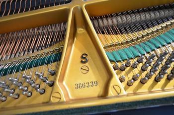 K800_K1024_Steinway 386 339 (2).JPG